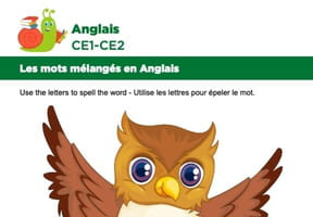 Les mots mélangés en Anglais, exercice14