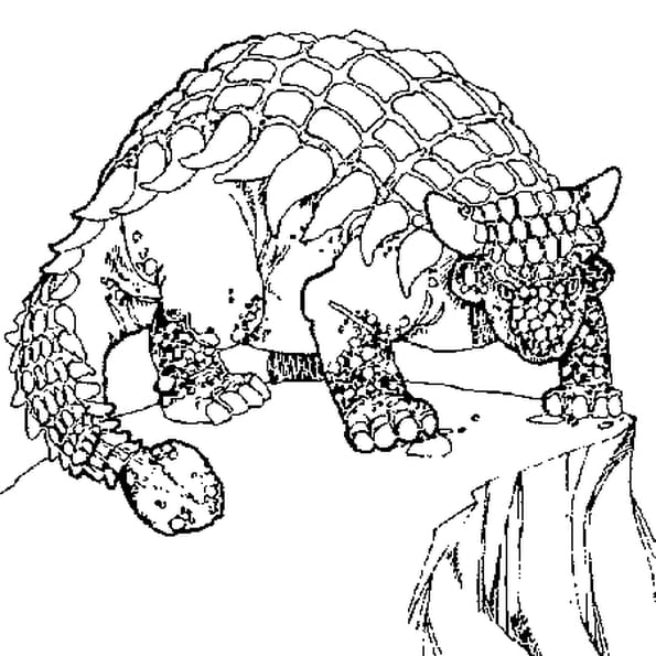 Coloriage Ankylosaure enervé