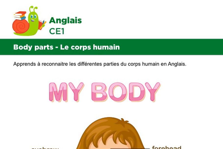 Le corps en Anglais, fillette vue de face