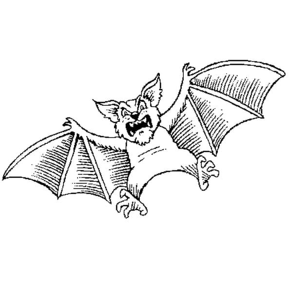 Coloriage chauve souris halloween en ligne gratuit imprimer - Chauve souris a imprimer ...