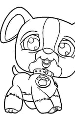 Coloriage pet shop chien