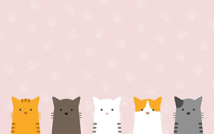 répandre la chatte pics