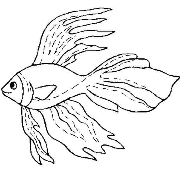 Dessin poisson d'avril 5 a colorier