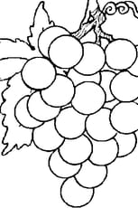 Coloriage Grappe de Raisin