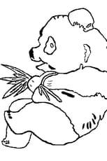 Coloriage Jeune panda avec branchages