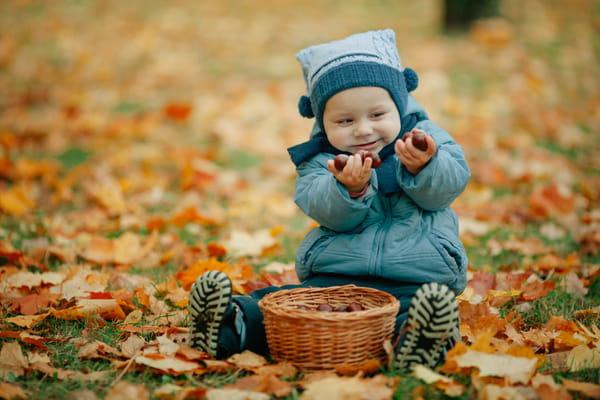 fruits-de-saison-novembre