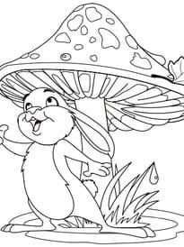 Lapin et champignon