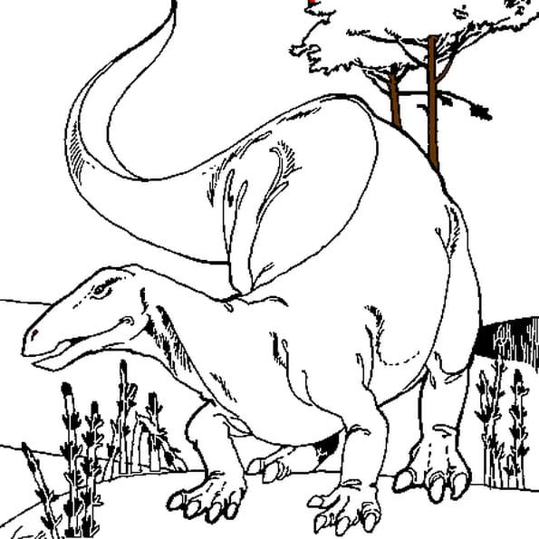 Coloriage Dinosaure Herbivore en Ligne Gratuit à imprimer