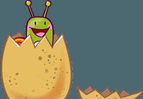 Les œufs d'escargots