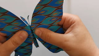 Étape 6: rabaissez les ailes du papillon