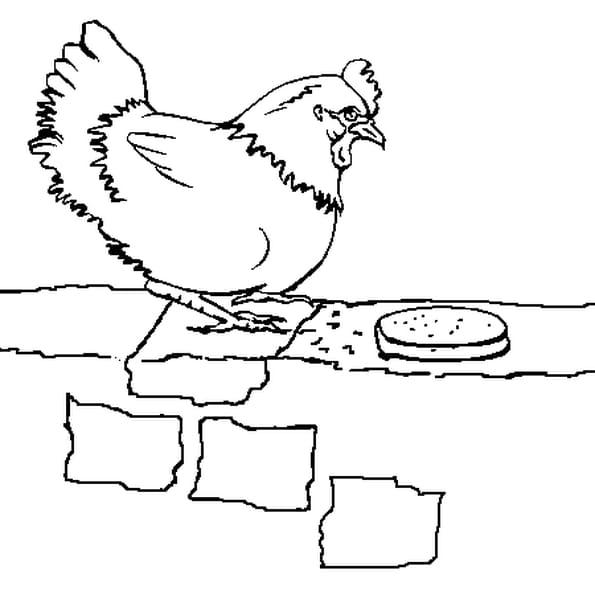 Coloriage une poule sur un mur en ligne gratuit imprimer - Une poule dessin ...