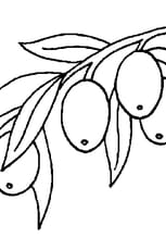 Coloriage Olives