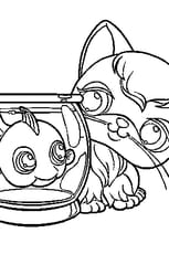 Coloriage Pet shop poisson