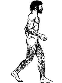 Homme de Cro Magnon