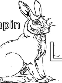 L comme Lapin