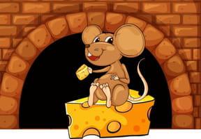 Une souris qui