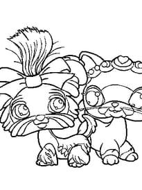 Pet Shop chat chien