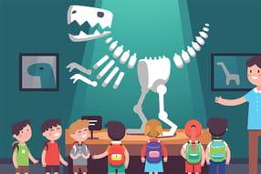 Fossiles de dinosaures