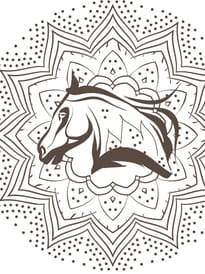 Coloriage Cheval Le Ranch.Coloriage Cheval A Imprimer Sur Hugolescargot Com