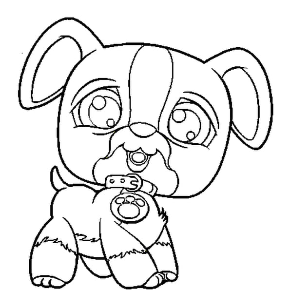 Dessin pet shop chien a colorier