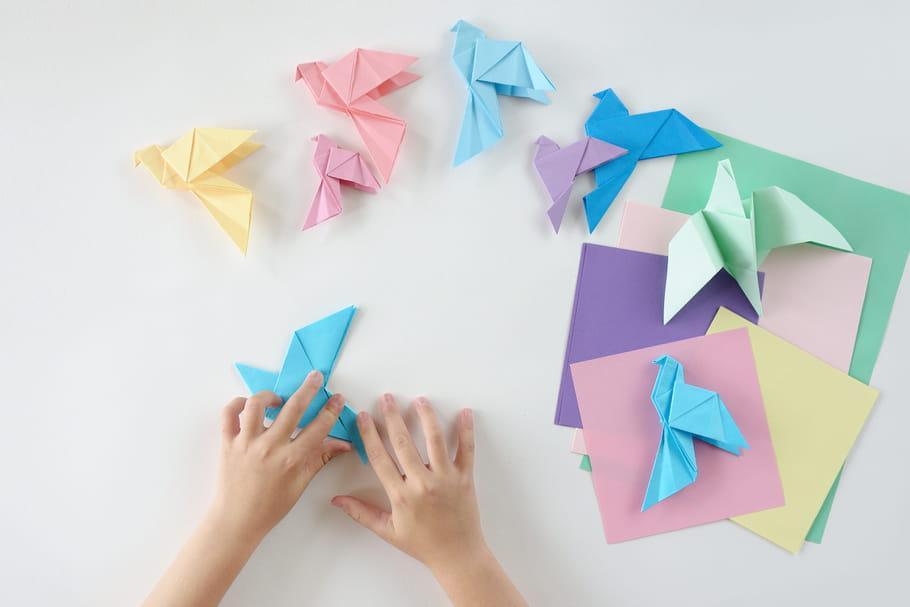 Origami animaux: lapin, papillon, grenouille, oiseau