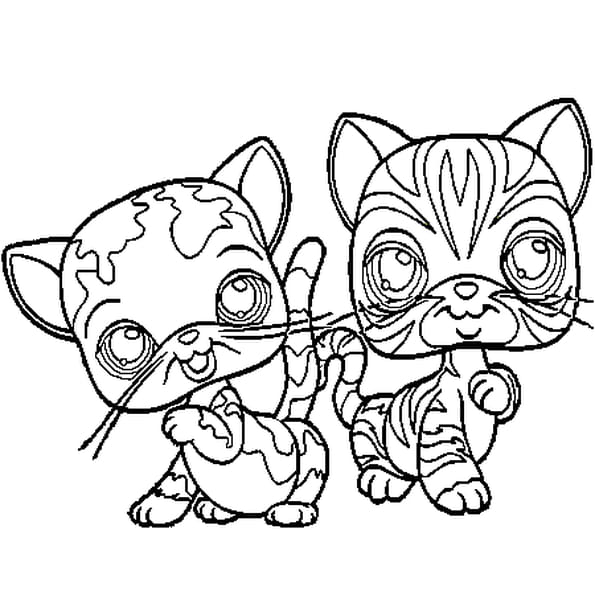Coloriage Pet Shop Chats En Ligne Gratuit à Imprimer