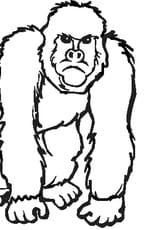 Coloriage Gorille pas content en Ligne Gratuit à imprimer