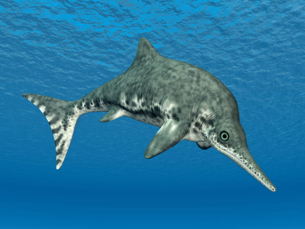 ichtyosaure-dinosaure-marin