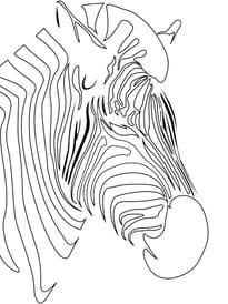 silhouette zèbre