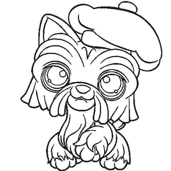 Coloriage Pet Shop chien 3