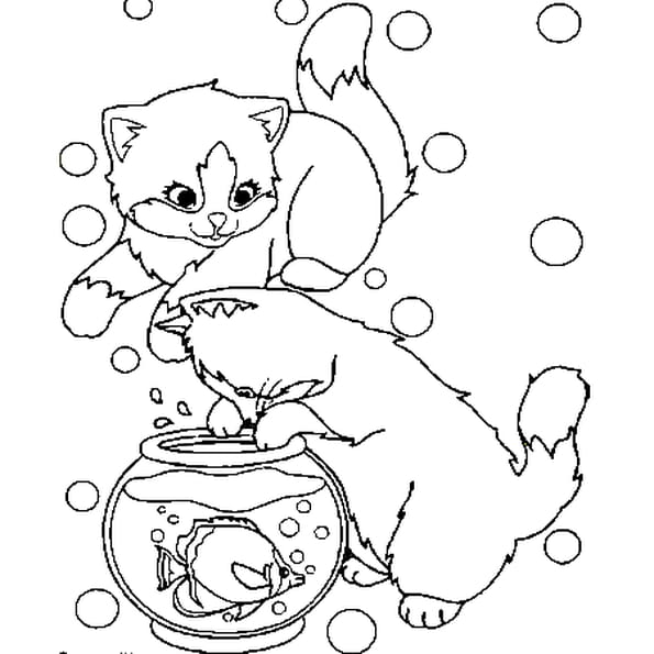 petits chats coloriage