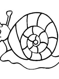 escargot rigolo