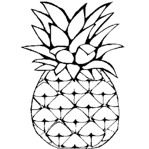 Dessin Ananas a colorier