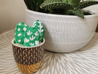 Comment peindre un cactus sur un galet?