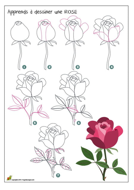 dessiner une rose. Black Bedroom Furniture Sets. Home Design Ideas