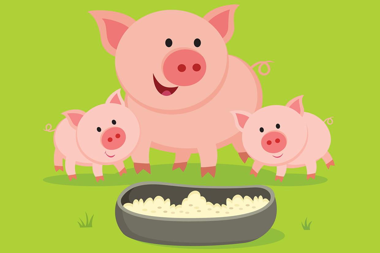 Coloriage cochon sur - Photo de cochon a imprimer ...