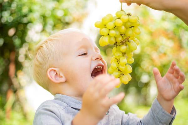 fruits-de-saison-aout