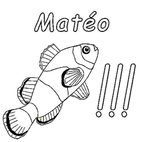 Dessin Matéo a colorier