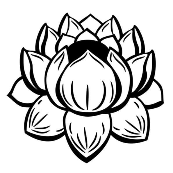 Coloriage fleur de lotus facile en ligne gratuit imprimer - Fleur en dessin ...