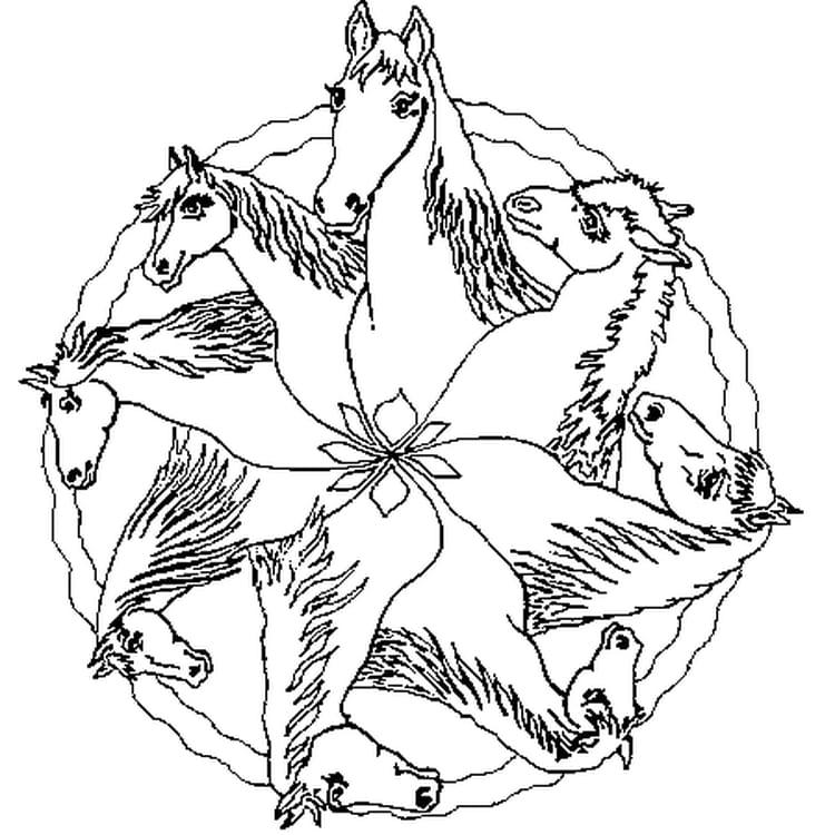 Coloriage Mandala Cheval sur Hugolescargot.com