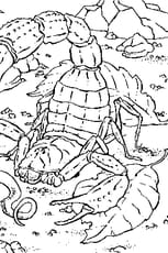 Coloriage de Scorpion en Ligne Gratuit à imprimer