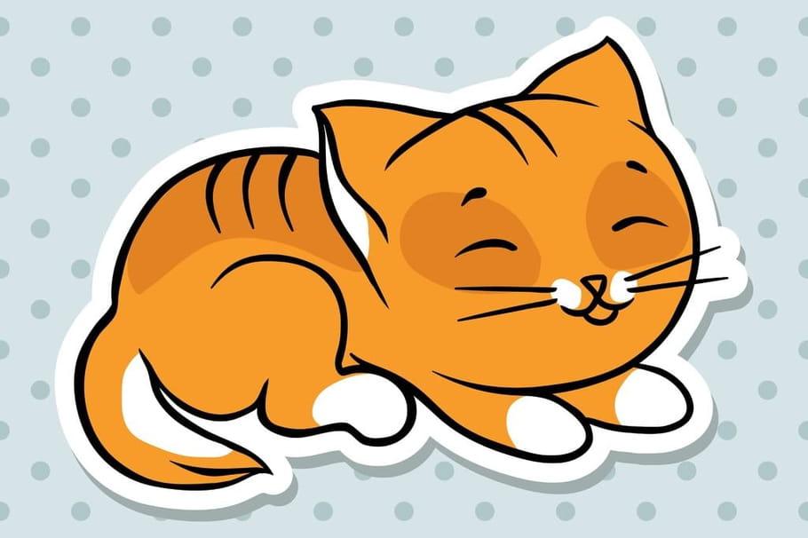 Comptine Chat Orange