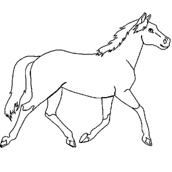 Coloriage cheval en ligne gratuit imprimer - Chevaux gratuits ...