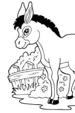 Coloriage Le petit âne de la ferme en Ligne Gratuit à imprimer