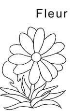 Coloriage lettre F comme fleur