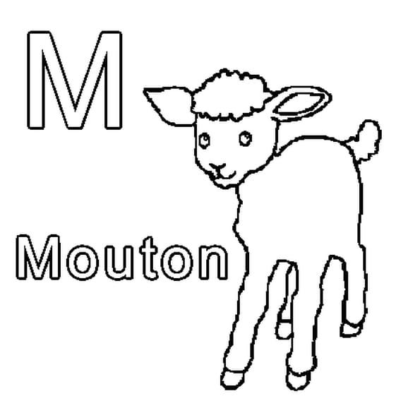 Coloriage M comme Mouton en Ligne Gratuit à imprimer
