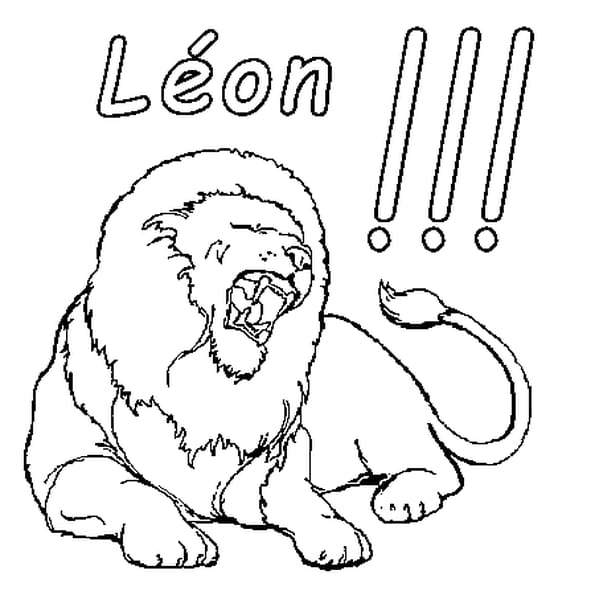 Dessin Léon a colorier