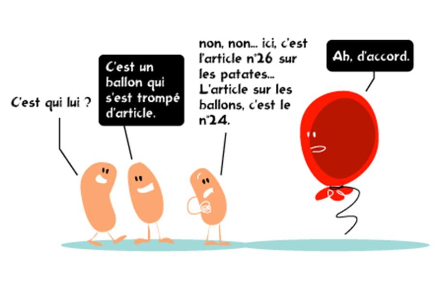 La petite histoire de la patate