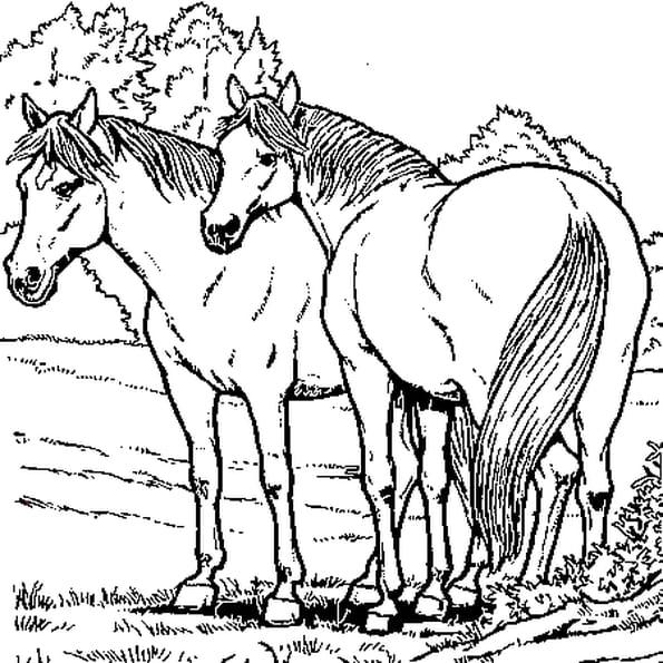 Coloriage de chevaux en ligne gratuit imprimer - Dessin cavaliere ...