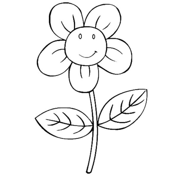 Dessin fleurs a colorier